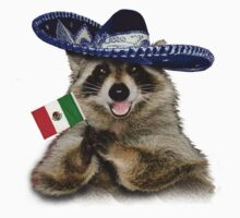 Mexican Raccoon by jkartlife