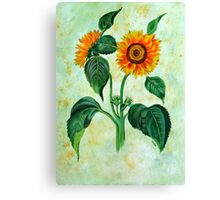 Vintage Sunflowers  Canvas Print