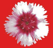 Red & White Flower Print Baby Tee