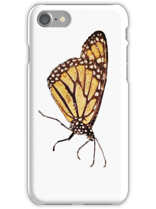 Monarch Butterfly Print On White by DreamByDay