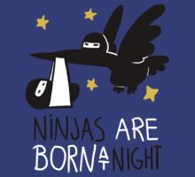 Ninjas are born at night... by Queenmob