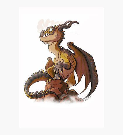 It's a dragon! Photographic Print