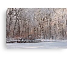 Fresh Coat Of Snow Canvas Print