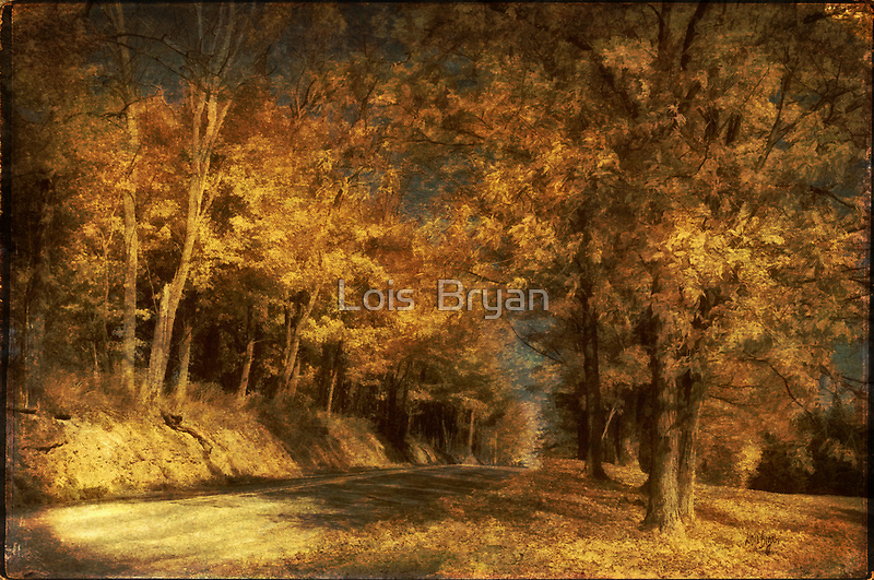 Back Roads by Lois  Bryan