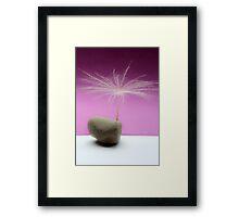 Seed Tree Framed Print