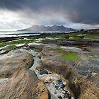 Rock Pool & Rum by damophoto