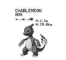 B&W Charmeleon iPhone / iPod Case by Aaron Campbell