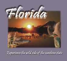 Florida (Experience the Wild Side of the Sunshine State) Kids Clothes