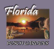 Florida (Busch Gardens) Kids Clothes