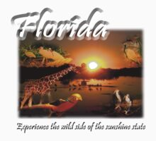 Florida (Experience the Wild Side of the Sunshine State) by jkartlife