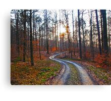 Silver Path in the Woods VRS2 Canvas Print