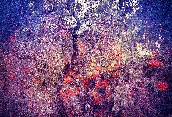 Hidden Garden of Desire by JennyRainbow