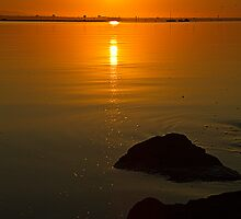 Waters edge by collpics