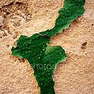 Africa, Isthmus of Suez, Middle East by Michele Filoscia