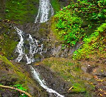 Maunawili falls Oahu Hawaii by raymona pooler