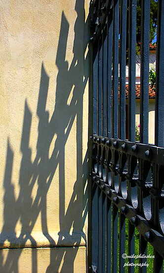Metal gate and its shadow by Michele Filoscia