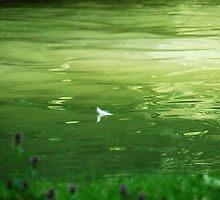 Adrift by AlisonOneL