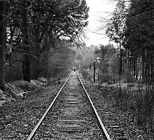 Down The Track. by Nick Griffin