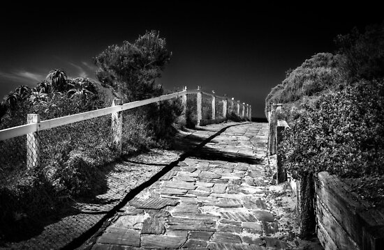 Horse Shoe Bay To Port Elliot Walkway. by Nicholas Griffin