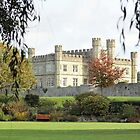 leeds castle over the grass by Martynb