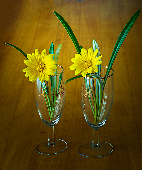 A Pair of Yellow's by Warren. A. Williams