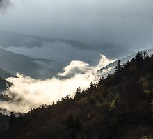 Morning Fog - Great Smoky Mountains National Park, North Carolina by Jason Heritage