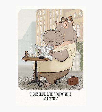 Mr. L'Hippopotame Photographic Print