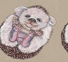 The Roly Poly Hedgehoglet by MagsWilliamson