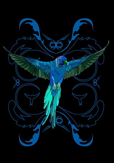 Blue Parrot by Adamzworld