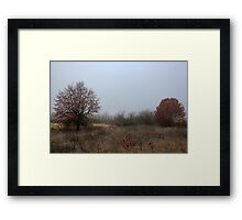 Last Remnant of Fall Framed Print
