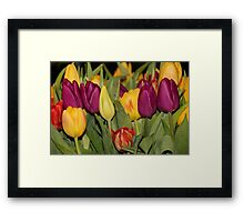 An Ocean Full Of Tulips III Framed Print