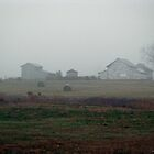 Foggy Farm by Kyle Wilson