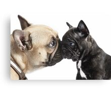 A Kiss From Auntie Canvas Print