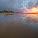 COLOURS OF THE MORNING by Lynden