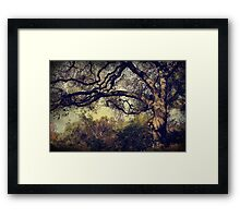 Just How it Ought to Be Framed Print