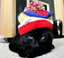 The Cattitude in a Hattitude by Ladymoose