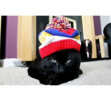 The Cattitude in a Hattitude Photographic Print