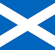 Flag of Scotland by Mark Podger
