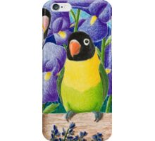 Black-faced Lovebirds iPhone Case/Skin