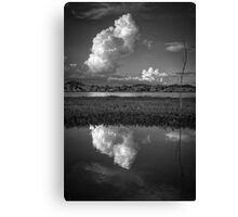 Cloud Patch 2 Canvas Print