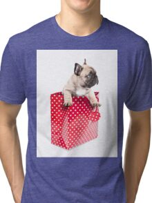 Gift Wrapped Frenchie Tri-blend T-Shirt