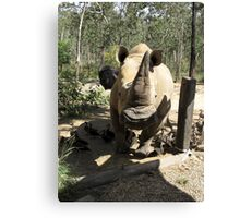 RUN!  Rhino coming (male) Canvas Print