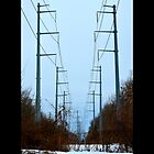 Transmission Towers Behind Nikola Tesla's Wardenclyffe Laboratory - Shoreham, New York by © Sophie Smith