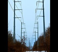 Transmission Towers Behind Nikola Tesla's Wardenclyffe Laboratory - Shoreham, New York by © Sophie W. Smith