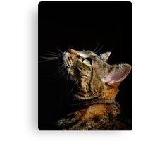 Believer Canvas Print