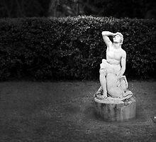 Light & Grief by Peter Denniston