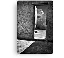 Through An Open Door. Canvas Print