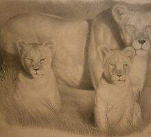 Lioness and cubs pencil drawing by Steven Strong