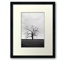 Elder Framed Print
