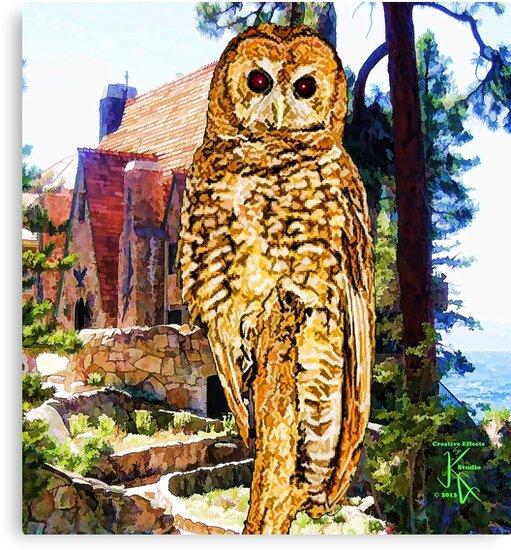 Owl At Lodge by jkgiarratano